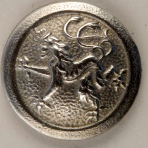 169 Rampant Lion Pewter Button