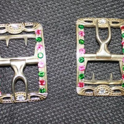 Gem Studded Buckle